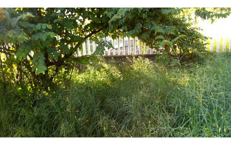 Foto de terreno habitacional en venta en  , la pochota, veracruz, veracruz de ignacio de la llave, 1109417 No. 04