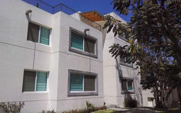 Foto de departamento en renta en, la pradera, cuernavaca, morelos, 1090851 no 01
