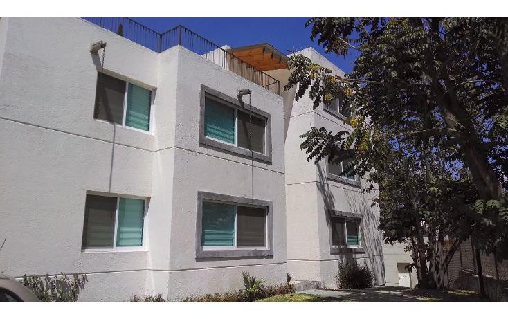 Foto de departamento en renta en  , la pradera, cuernavaca, morelos, 1090851 No. 01