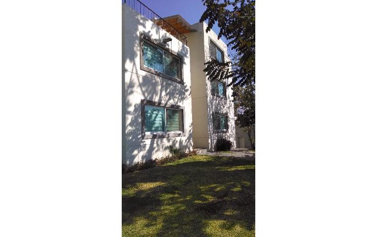 Foto de departamento en renta en  , la pradera, cuernavaca, morelos, 1090851 No. 05