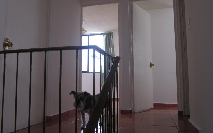 Foto de casa en renta en  , la pradera, cuernavaca, morelos, 1459927 No. 08