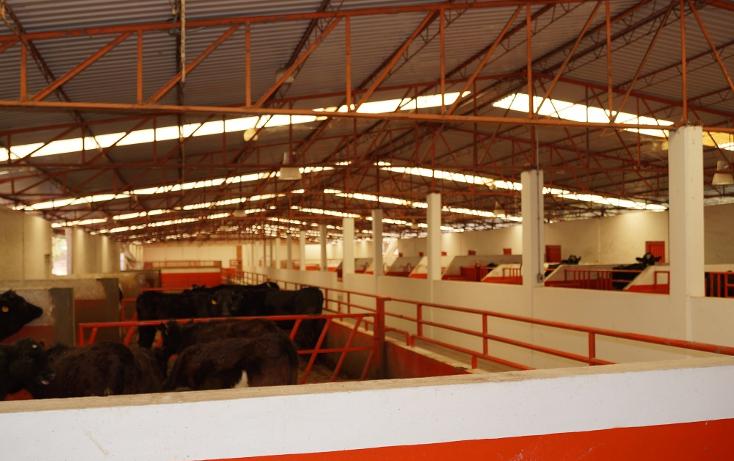 Foto de rancho en venta en  , la presa, villa victoria, méxico, 1418831 No. 08