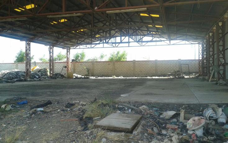 Foto de terreno comercial en venta en  , la presita, culiacán, sinaloa, 1168369 No. 04