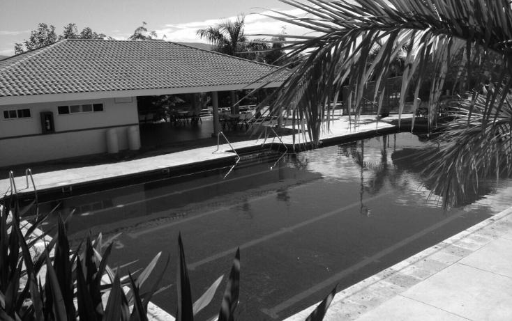 Foto de casa en venta en  , la primavera, culiacán, sinaloa, 1136531 No. 18