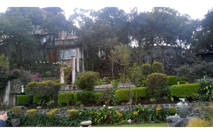 Foto de terreno comercial en renta en  , la primavera, tlalpan, distrito federal, 1604150 No. 03