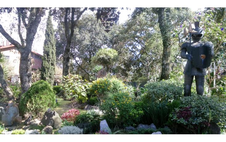 Foto de terreno comercial en renta en  , la primavera, tlalpan, distrito federal, 1604150 No. 18