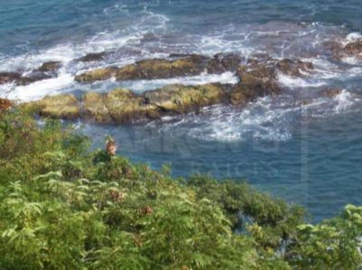 Foto de terreno habitacional en venta en la punta 135, la punta, manzanillo, colima, 1652307 No. 07