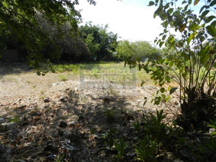 Foto de terreno habitacional en venta en  7, la punta, manzanillo, colima, 1652059 No. 02