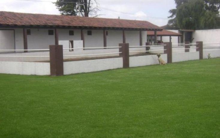 Foto de rancho en venta en la purisima, guadalupe victoria, otzolotepec, estado de méxico, 1377313 no 07