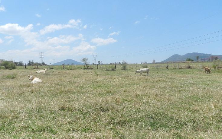 Foto de terreno habitacional en venta en carretera el salto jalisco la purisima s/n el laurel , la purísima, tlajomulco de zúñiga, jalisco, 3423339 No. 14