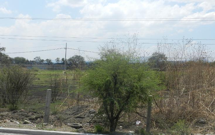 Foto de terreno habitacional en venta en carretera el salto jalisco la purisima s/n el laurel , la purísima, tlajomulco de zúñiga, jalisco, 3423511 No. 04