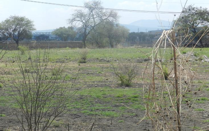 Foto de terreno habitacional en venta en carretera el salto jalisco la purisima s/n el laurel , la purísima, tlajomulco de zúñiga, jalisco, 3423511 No. 08
