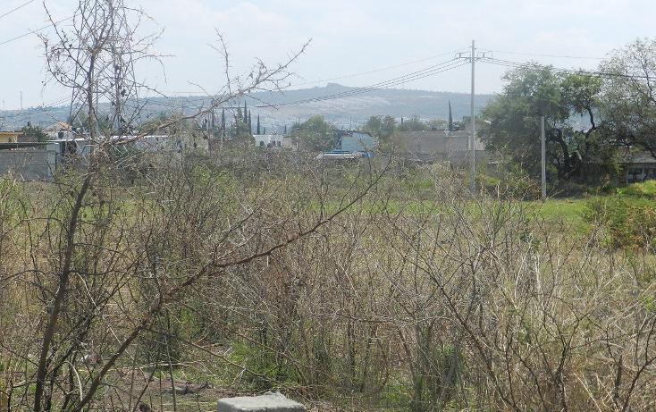 Foto de terreno habitacional en venta en carretera el salto jalisco la purisima s/n el laurel , la purísima, tlajomulco de zúñiga, jalisco, 3423511 No. 10