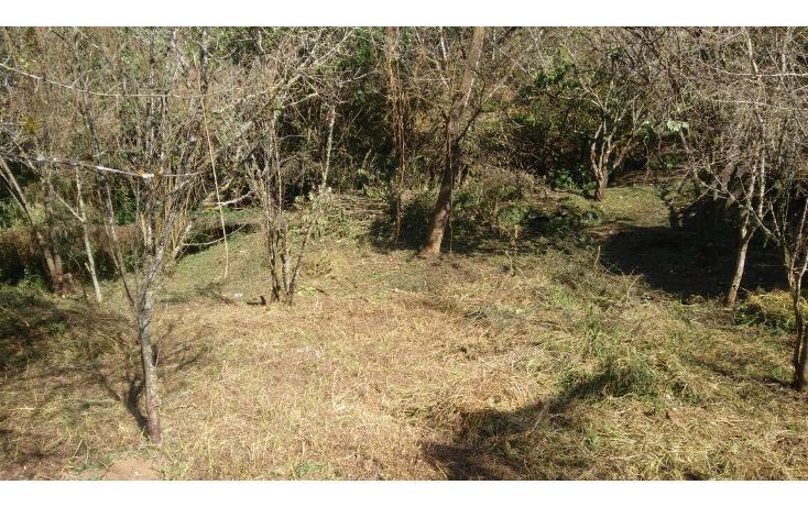 Foto de terreno habitacional en venta en  , la quinta san martín, san cristóbal de las casas, chiapas, 1877624 No. 02