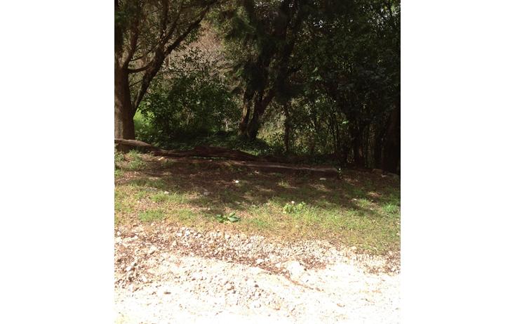 Foto de terreno habitacional en venta en  , la quinta san martín, san cristóbal de las casas, chiapas, 1877624 No. 03