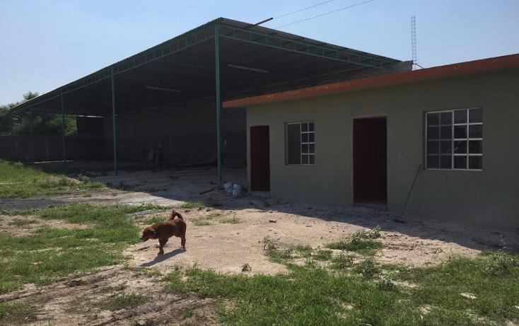 Foto de terreno comercial en renta en  , la retama (ejido), reynosa, tamaulipas, 1870118 No. 06
