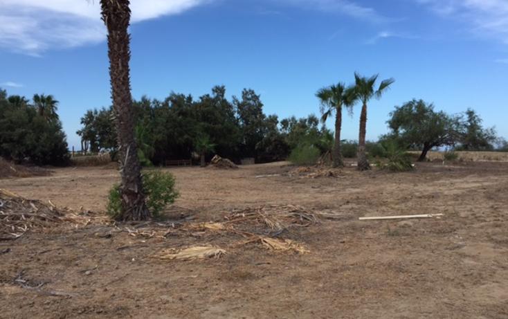 Foto de terreno habitacional en venta en  , la rivera, los cabos, baja california sur, 1259459 No. 07