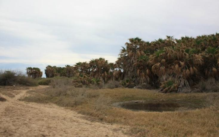 Foto de terreno comercial en venta en  , la rivera, los cabos, baja california sur, 825523 No. 02