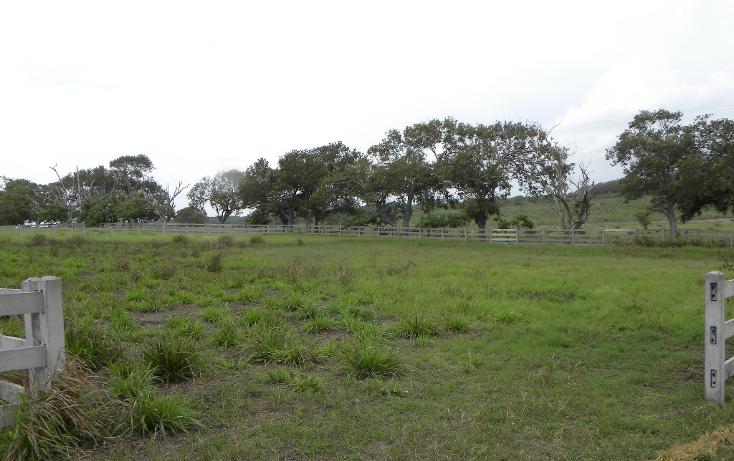 Foto de terreno habitacional en venta en  , la rivera, tampico alto, veracruz de ignacio de la llave, 1060621 No. 04