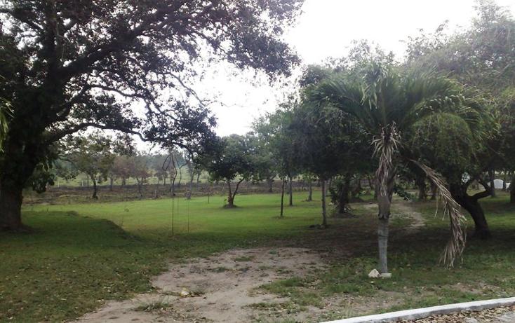 Foto de terreno habitacional en venta en  , la rivera, tampico alto, veracruz de ignacio de la llave, 1067293 No. 07