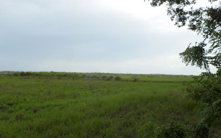 Foto de terreno habitacional en venta en  , la rivera, tampico alto, veracruz de ignacio de la llave, 1122533 No. 03