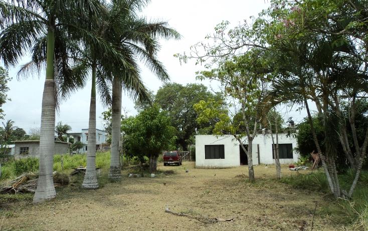 Foto de terreno habitacional en venta en  , la rivera, tampico alto, veracruz de ignacio de la llave, 1131983 No. 06