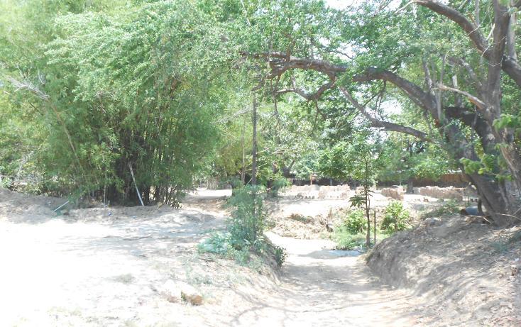 Foto de terreno comercial en venta en  , la sabana, acapulco de juárez, guerrero, 1070973 No. 05