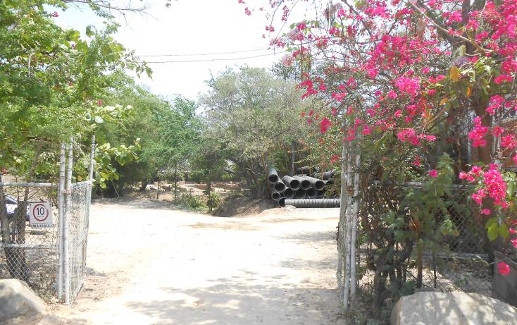 Foto de terreno comercial en venta en  , la sabana, acapulco de juárez, guerrero, 1070973 No. 06