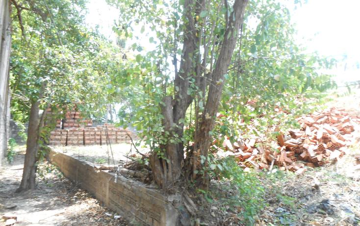 Foto de terreno comercial en venta en  , la sabana, acapulco de juárez, guerrero, 1070973 No. 14