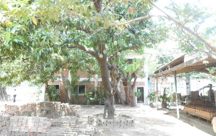 Foto de terreno comercial en venta en  , la sabana, acapulco de juárez, guerrero, 1070973 No. 19