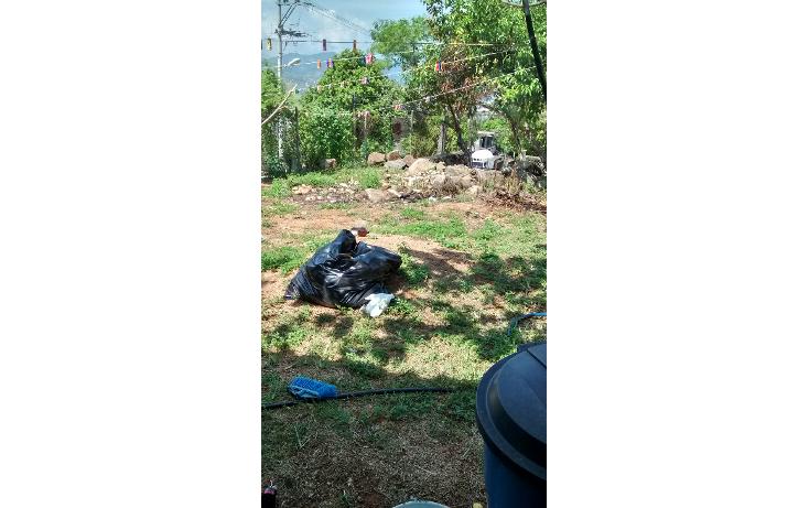Foto de terreno habitacional en venta en  , la sabana, acapulco de ju?rez, guerrero, 1550086 No. 08