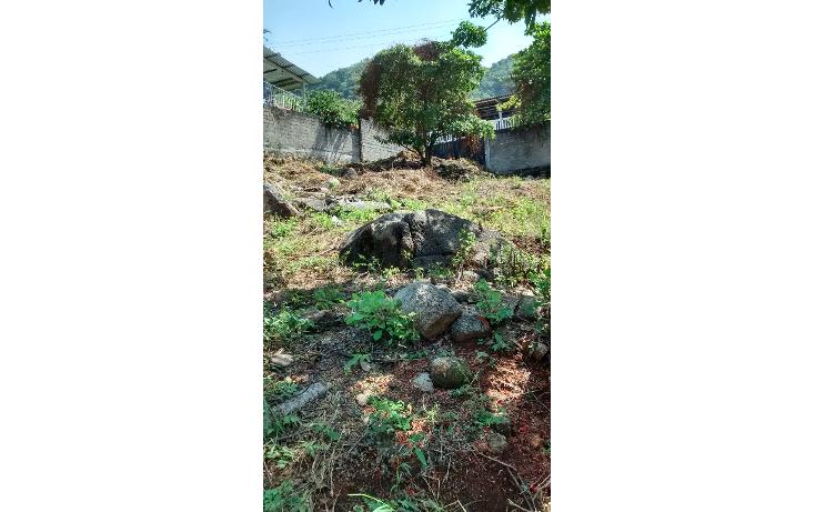 Foto de terreno habitacional en venta en  , la sabana, acapulco de ju?rez, guerrero, 1550086 No. 10