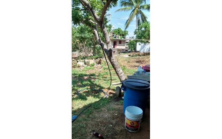 Foto de terreno habitacional en venta en  , la sabana, acapulco de juárez, guerrero, 1864260 No. 08