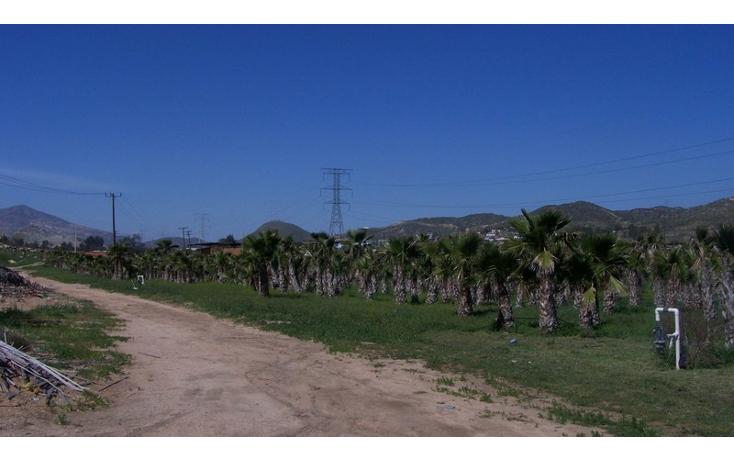 Foto de terreno comercial en venta en  , la sierra, tecate, baja california, 1213621 No. 01