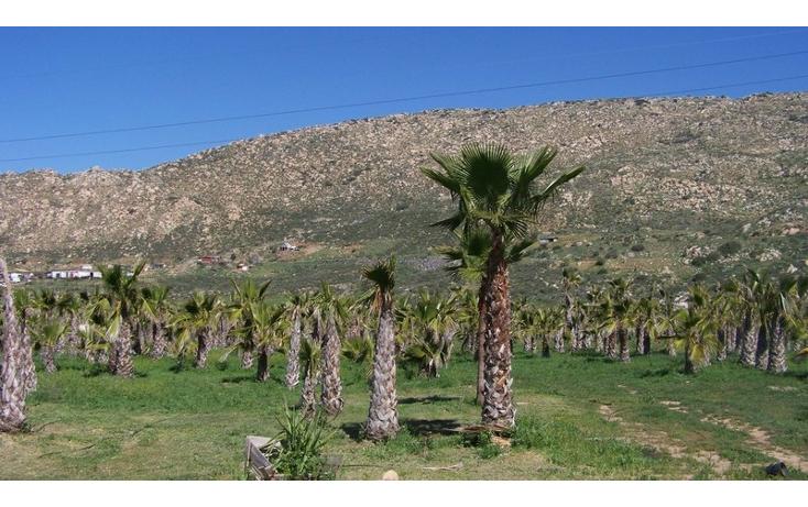 Foto de terreno comercial en venta en  , la sierra, tecate, baja california, 1213621 No. 03