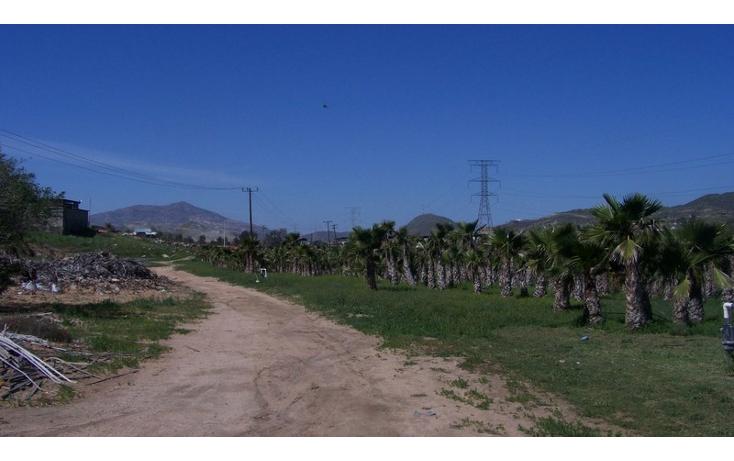Foto de terreno comercial en venta en  , la sierra, tecate, baja california, 1213621 No. 04