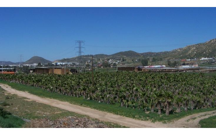 Foto de terreno comercial en venta en  , la sierra, tecate, baja california, 1213621 No. 06