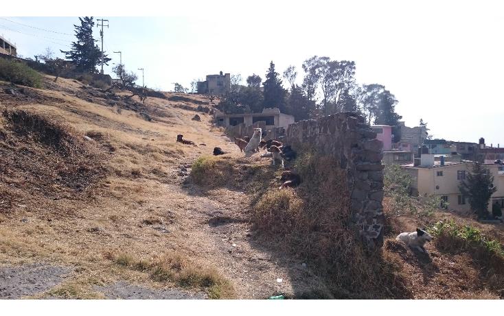 Foto de terreno habitacional en venta en  , la teresona, toluca, m?xico, 1931782 No. 05