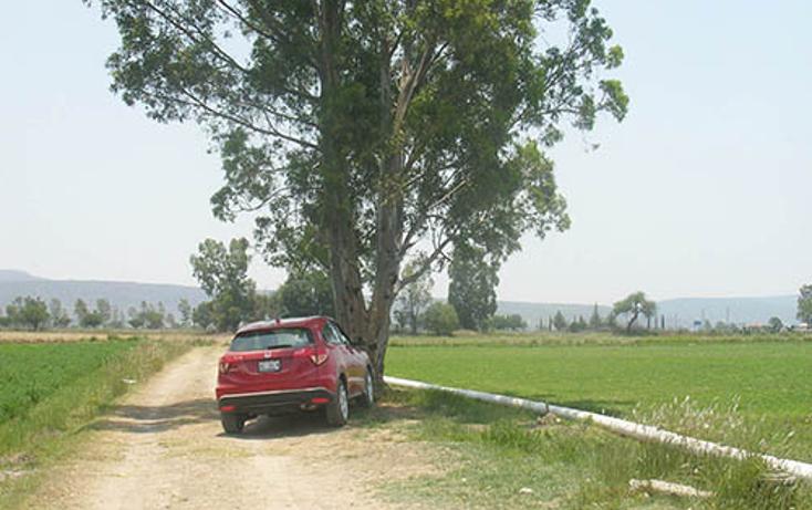 Foto de terreno habitacional en venta en  , la trinidad, tequisquiapan, querétaro, 1313721 No. 06