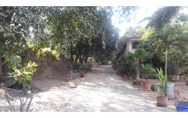 Foto de casa en venta en  , la venta, acapulco de juárez, guerrero, 1610168 No. 15