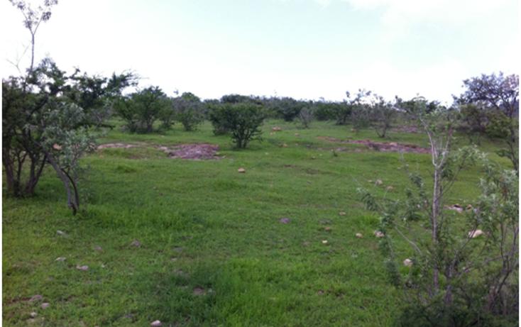 Foto de terreno industrial en venta en  , la venta del astillero, zapopan, jalisco, 1300353 No. 02