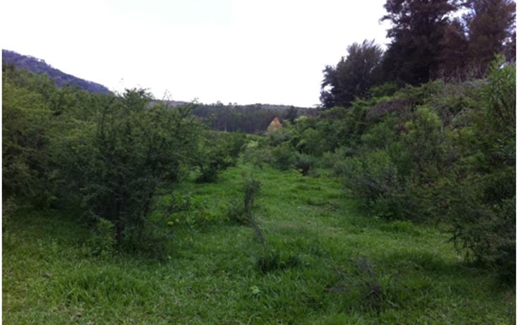 Foto de terreno industrial en venta en  , la venta del astillero, zapopan, jalisco, 1300353 No. 03
