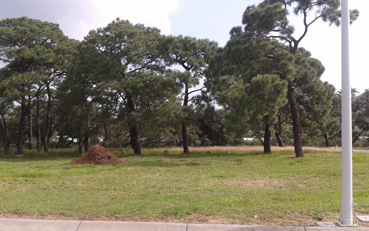 Foto de terreno habitacional en venta en  , la venta del astillero, zapopan, jalisco, 2045637 No. 02