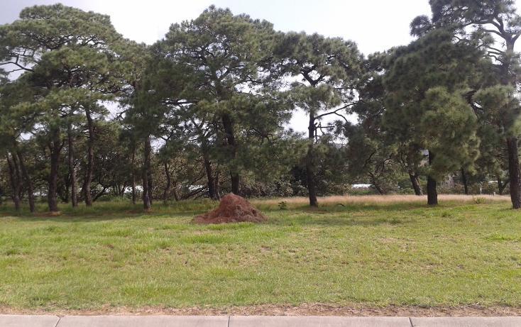 Foto de terreno habitacional en venta en  , la venta del astillero, zapopan, jalisco, 2045637 No. 03