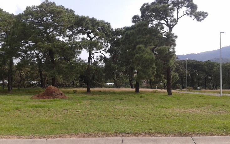 Foto de terreno habitacional en venta en  , la venta del astillero, zapopan, jalisco, 2045637 No. 04