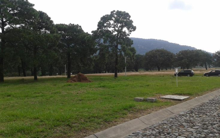 Foto de terreno habitacional en venta en  , la venta del astillero, zapopan, jalisco, 2045637 No. 05