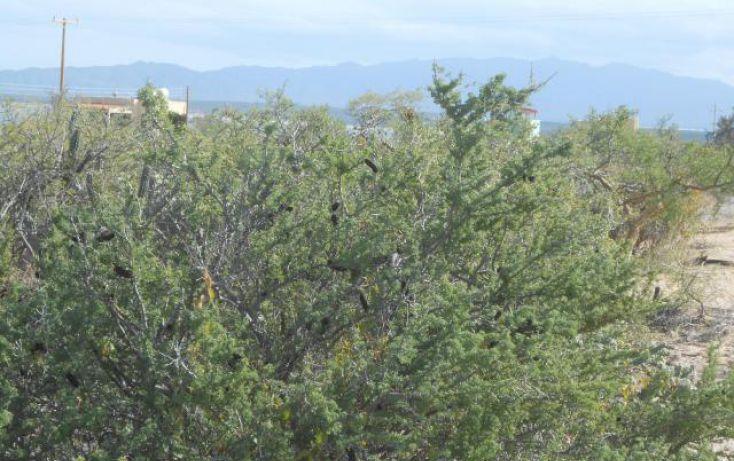 Foto de terreno habitacional en venta en, la ventana, la paz, baja california sur, 1070333 no 06