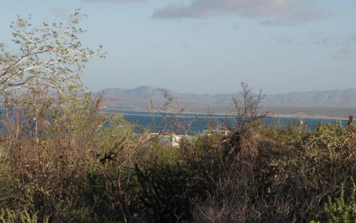 Foto de terreno habitacional en venta en  , la ventana, la paz, baja california sur, 1267953 No. 05