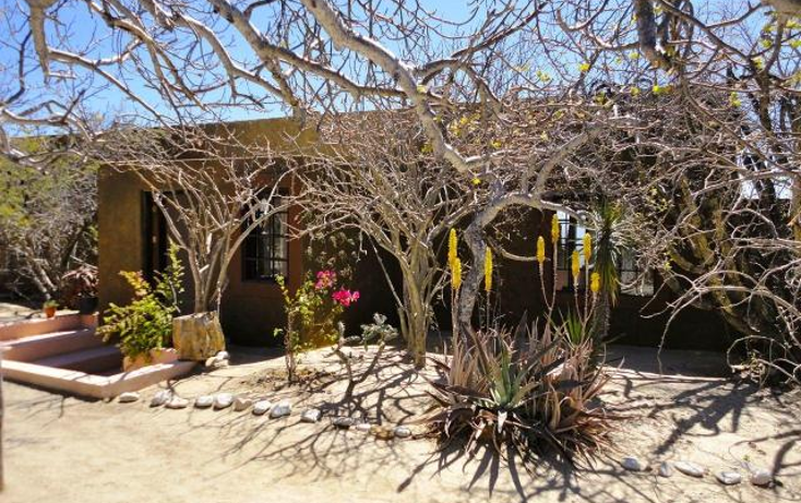 Foto de casa en venta en  , la ventana, la paz, baja california sur, 1459571 No. 11