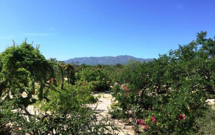 Foto de terreno habitacional en venta en  , la ventana, la paz, baja california sur, 1467897 No. 05